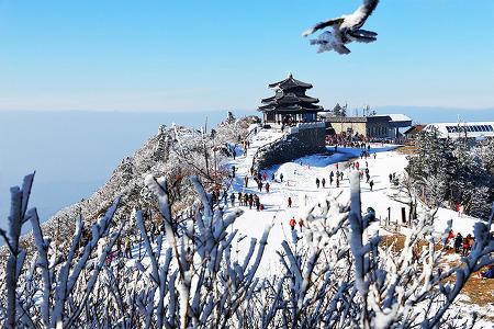 설경 여행 명소! 12월 출사지로도 딱, 눈이 아름다운 국내 겨울여행지 추천