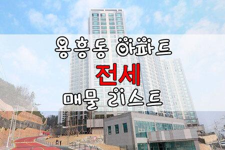 ◈포항아파트◈ 1월2일 용흥동 아파트 전세 리스트 : 쌍용아파트, KCC, 용흥우방, 한라, 현대아파트