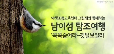 [남이섬 / 체험] 남이섬 탐조여행 '꼭꼭숨어라~깃털보일라'
