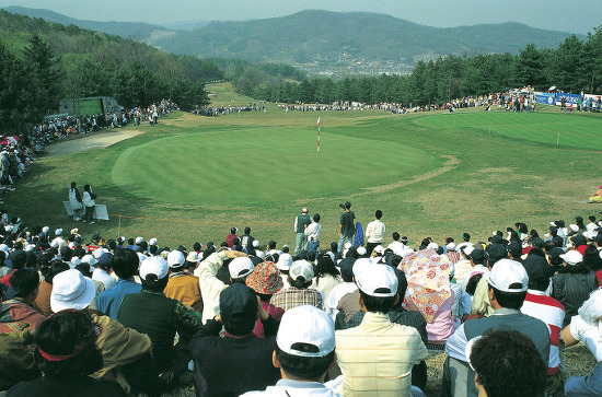 골프중계 더 재밌게 보는 팁