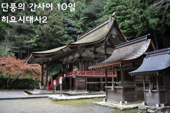 단풍의 간사이 - 10일 오쓰9 (히요시대사日吉大社2)