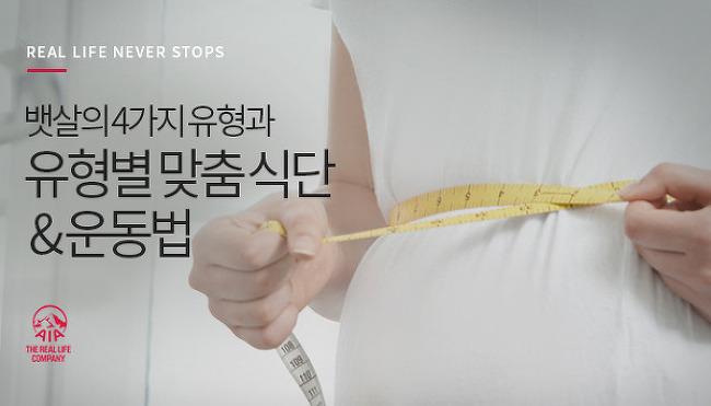뱃살의 4가지 유형과 각 유형별 맞춤 식단 & 운..