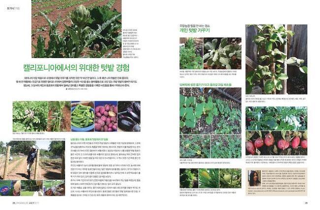 황유진 정기 컬럼 Queen- Organic Life 2017년..