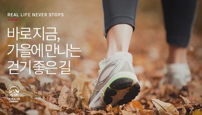 낭만 넘치는 가을, 놓치면 안될 걷기 좋은 길