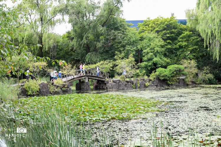 파주 벽초지문화수목원 가족들과 잠시 산책겸 다녀왔습니다.