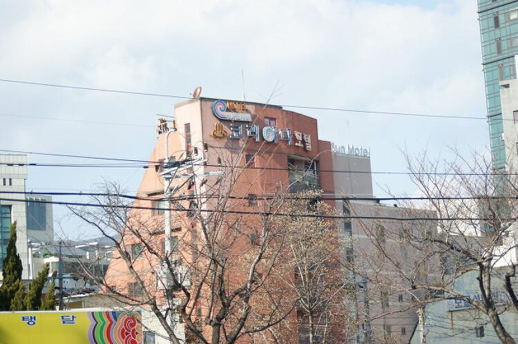 한국의 이모저모 - 한국에서 흔히 볼 수 있는..