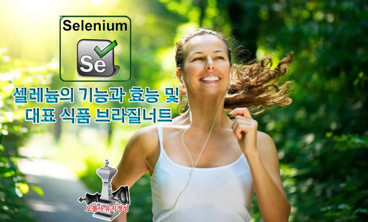 셀레늄의 기능과 효능 및 대표 식품 브라질너트