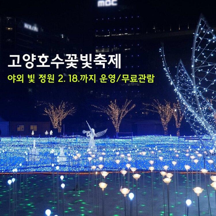 고양호수꽃빛축제 축소 운영 공지