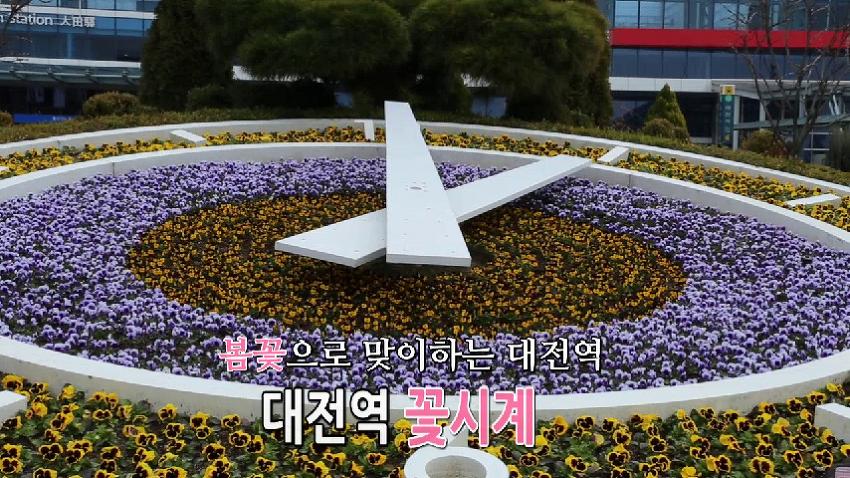 저, 참 예쁘죠? 대전역 꽃시계와 대전시청사 화단에 봄내음 물씬
