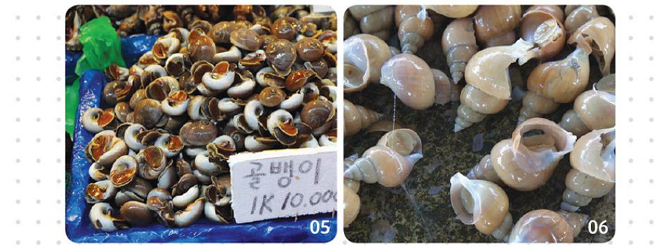 봄 여름 주의해서 먹어야 할 해산물(바다숨 Vol.6)