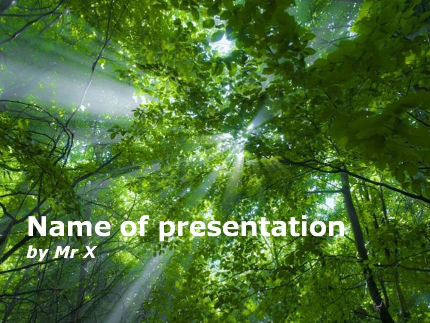 무료PPT템플릿 심플한PPT배경 파워포인트디자인다운 :: [나무]PPT서식/예쁜 파워포인트배경