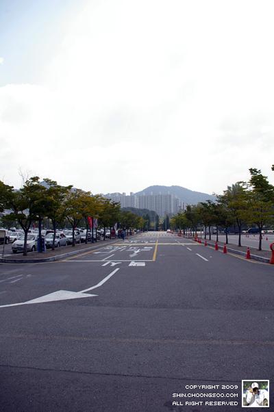 롯데마트 입구 도로
