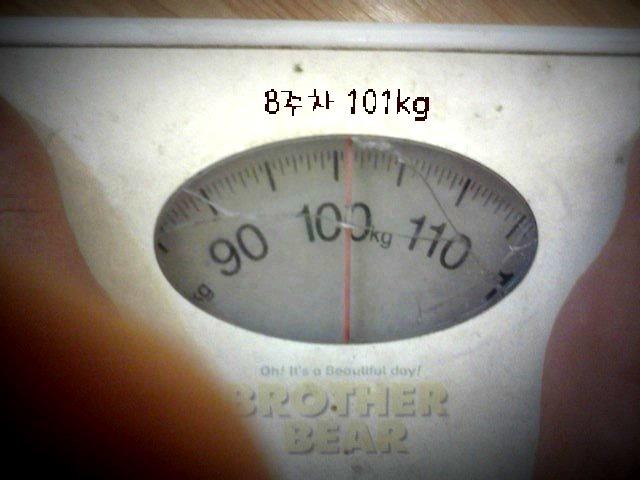 8주차 101kg이다.