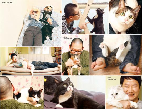 고양이, 애묘, 친칠라, 턱시도, 고등어, 길냥이, 고양이 애교