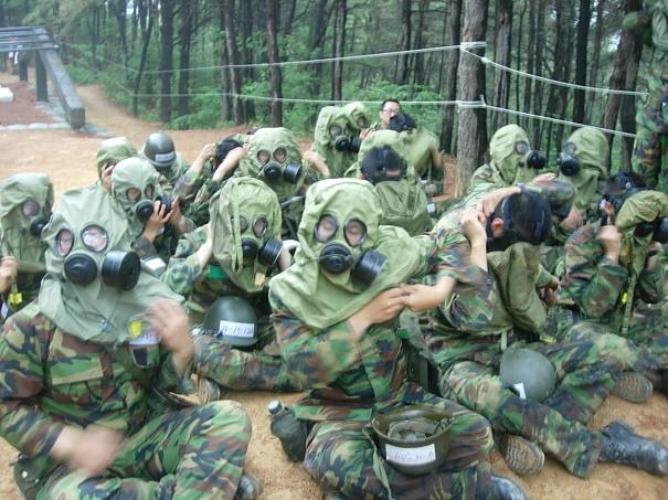 외국 개발자들이 보기에 군대 같은 한국 회사