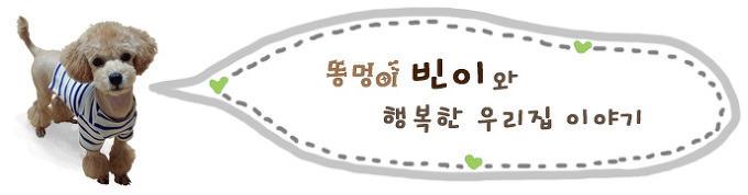 토이푸들 강아지 보양식