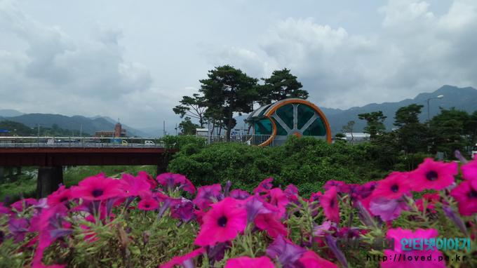 곡성 섬진강 기차마을 풍경