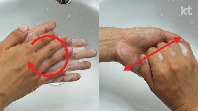 올바른 손씻기 : 손바닥을 비비고, 손가락을 깍지끼고 문지른다