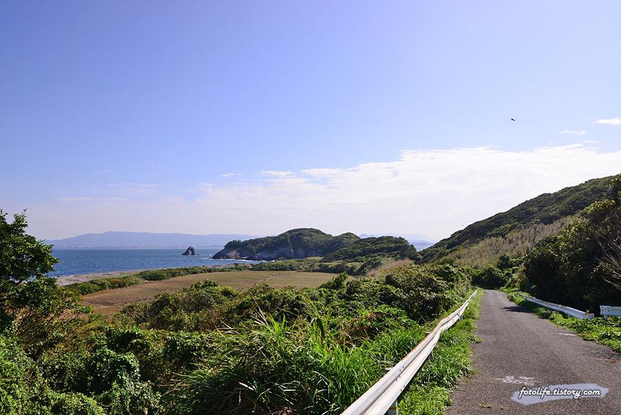 [일본/후쿠오카] 고양이섬 아이노시마(相島) 한바퀴 돌아보기