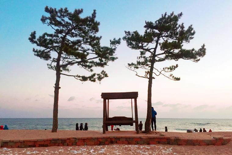 정동진 헌화로 모래시계공원 모래시계해변