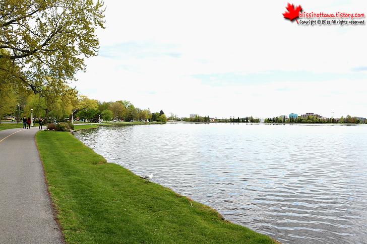캐나다 오타와 운하