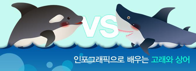 인포그래픽 고래 상어