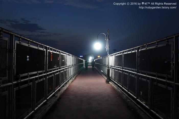 경주 여행 / '응답하라 1988'로 돌아가보자! /경주역 뒷편 황오동 올빼미 산책