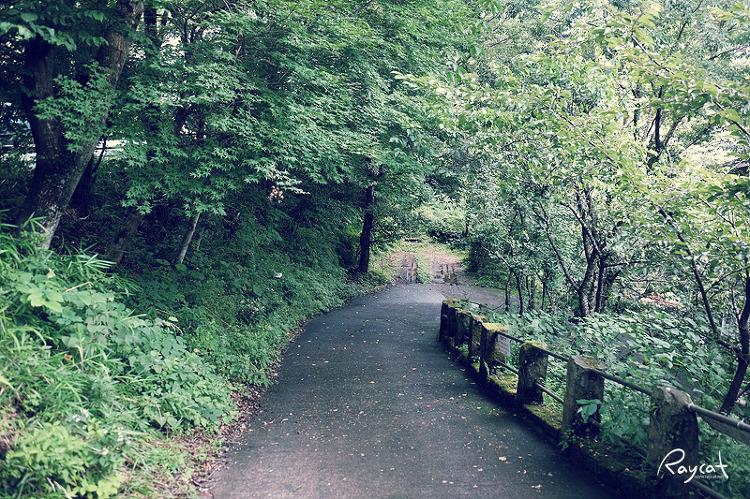 쿠로카와 온천길 숲속길