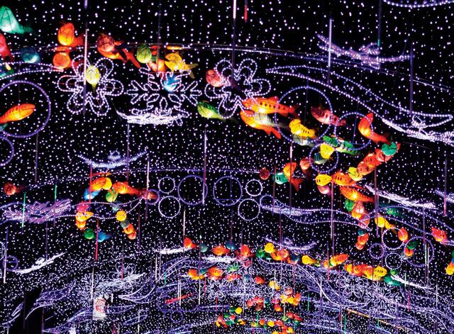 화천산천어축제