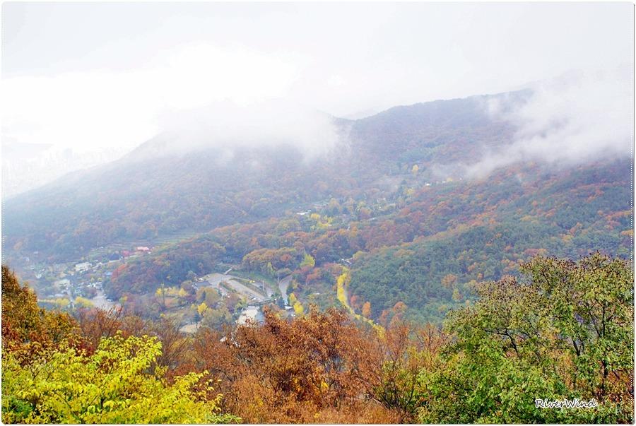 금정산의 가을단풍