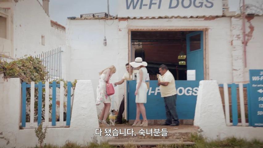 휴가철 필수 서비스, 와이파이(Wi-fi)를 찾는 개 '와이파이 독(Wi-fi Dogs)' - T모바일의 광고 영상, 호세의 와이파이 개(Jose's Wifi Dogs) [한글자막]