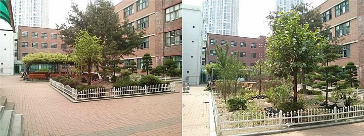 덕수고등학교 화단 확대