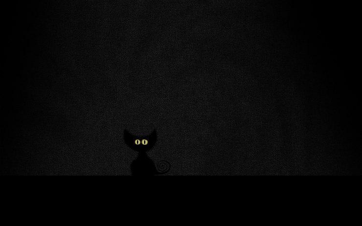 Ecran Noir Iphone  Plus