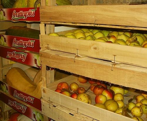 ▲ 우리 집 켈러의 과일 채소 보관 모습