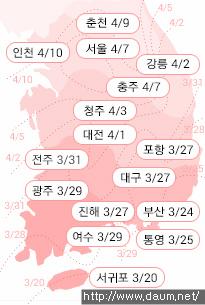 2017년 봄꽃 개화시기-벚꽃