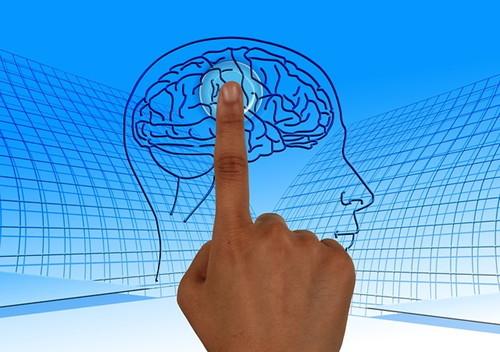 뇌를 젊게 하는 방법 5가지