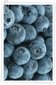 블루베리-종합건강식품
