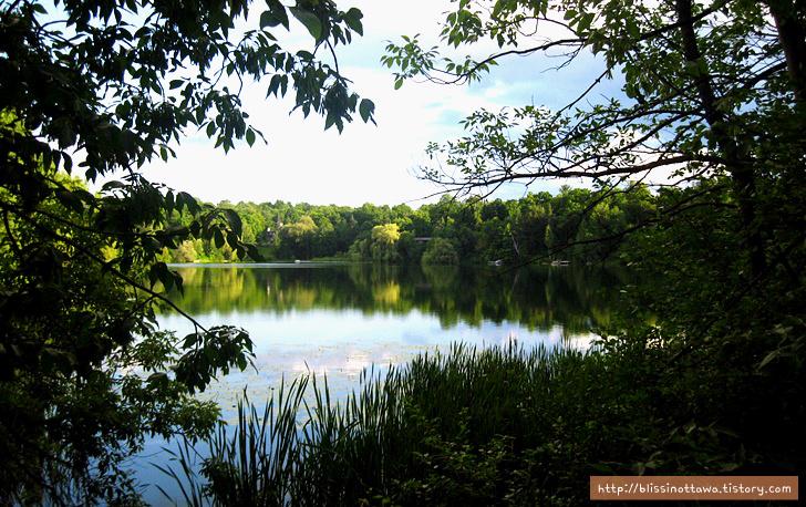 캐나다 부자 동네 Rockcliffe 공원 호수