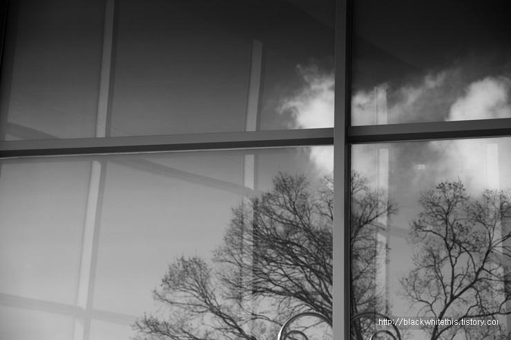 하늘을 향해 열린 창2