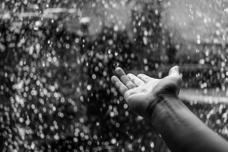 fall rain falls