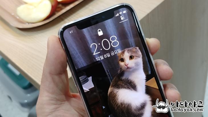 애플 아이폰X 페이스ID 단점