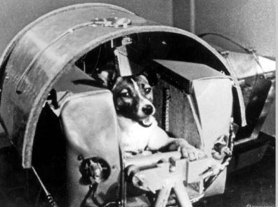 스푸트니크 우주 탐사와 우주개 라이카