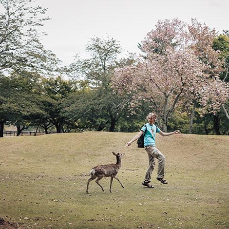 나라 사슴과 디즈니 왕자